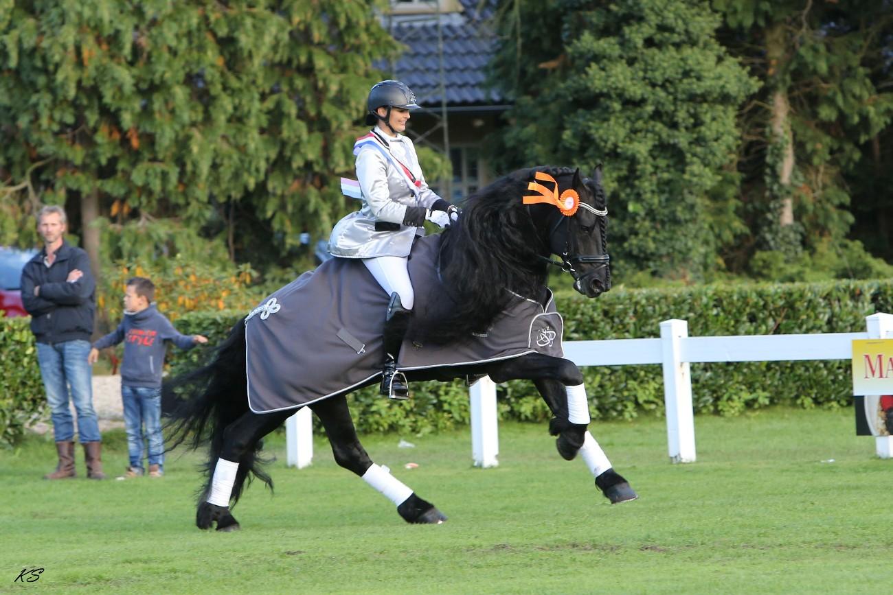 Klasse M2 Esther Liano – Thijs