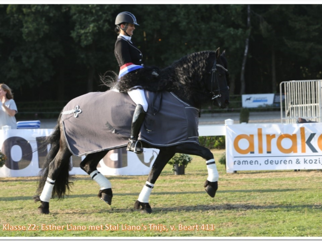 Klasse Z2_ Esther Liano, Stal Liano Thijs, v. Beart 411