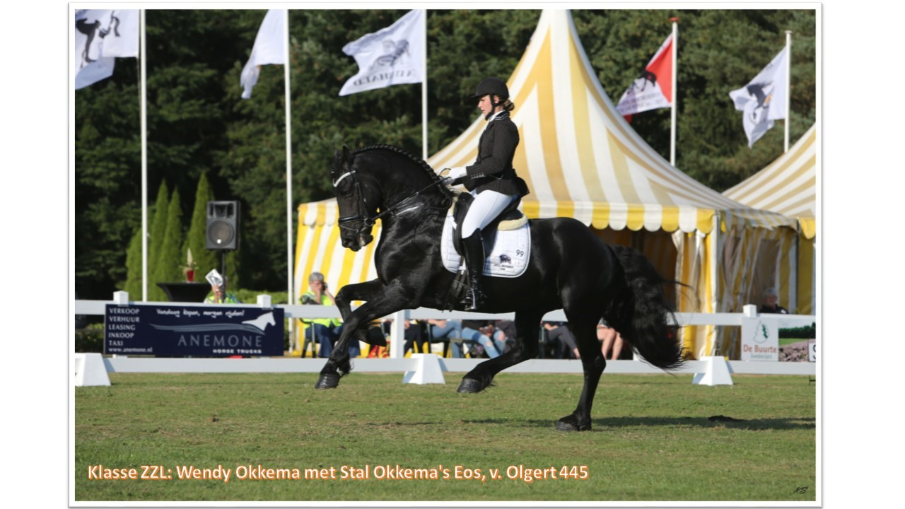 Klasse ZZ-Licht_ Wendy Okkema met Stal Okkema's Eos, v. Olgert 445
